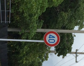 西表島交通速度
