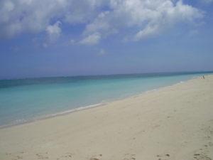 砂浜とエメラルドグリーンの海が見られる西の浜