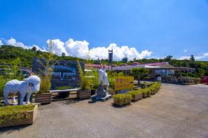 農村風景と近代的な「田空の駅」を併せ持つ「癒しの空間」