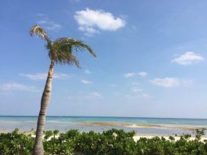 久米島 イーフビーチ
