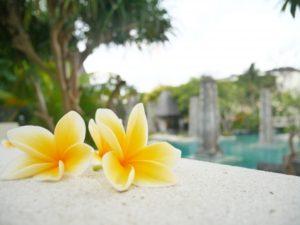西表島でおすすめのホテル