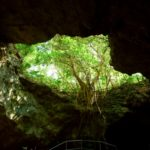 日本で唯一海に抜ける鍾乳洞へ